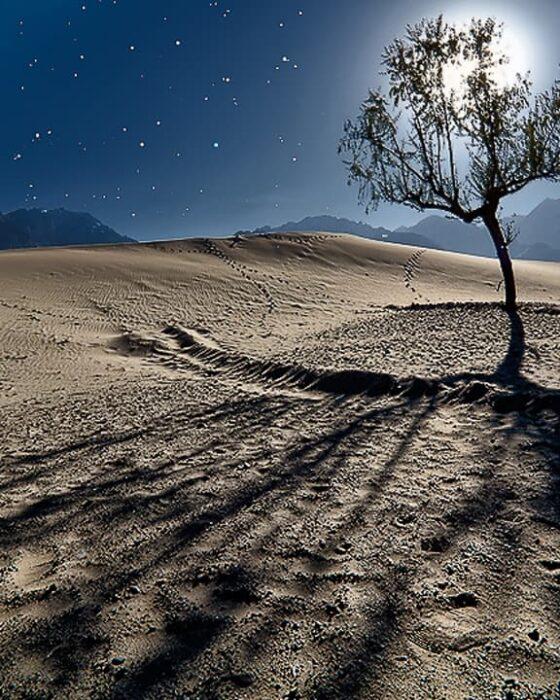 Katpana Cold desert