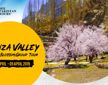 Hunza Valley Blossom Tour 5Days 5 April 2019