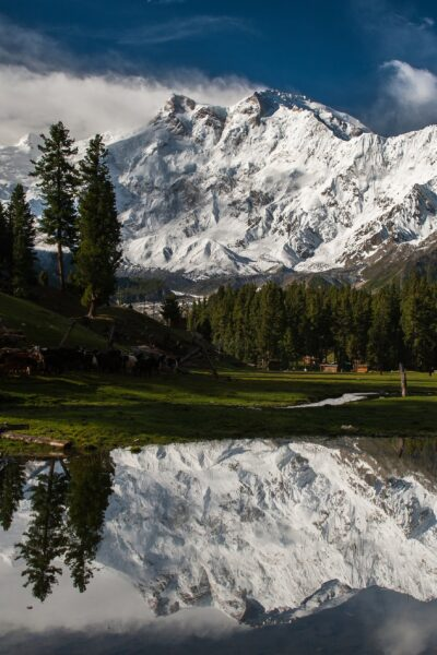 Fairy Meadows 5 Days 4 Nights Tour